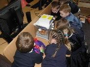 Living Eggs Chicks in the classroom